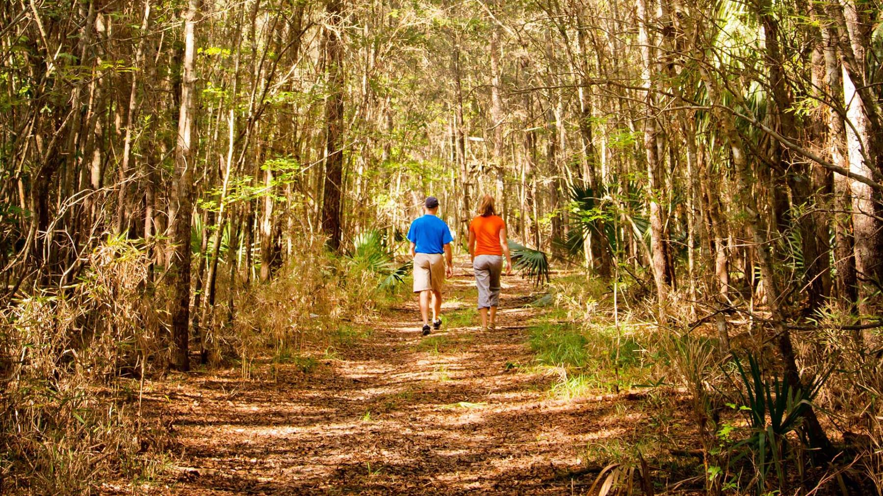 Mount Pleasant Carolina Park Community Lifestyle Walking Trails