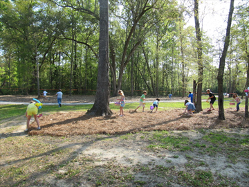 Carolina_Park_Easter_Event_2014_15.JPG