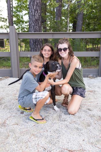 Docent_Prodigy_Carolina_Park_Dog_Run_7_14_2017_449.jpg